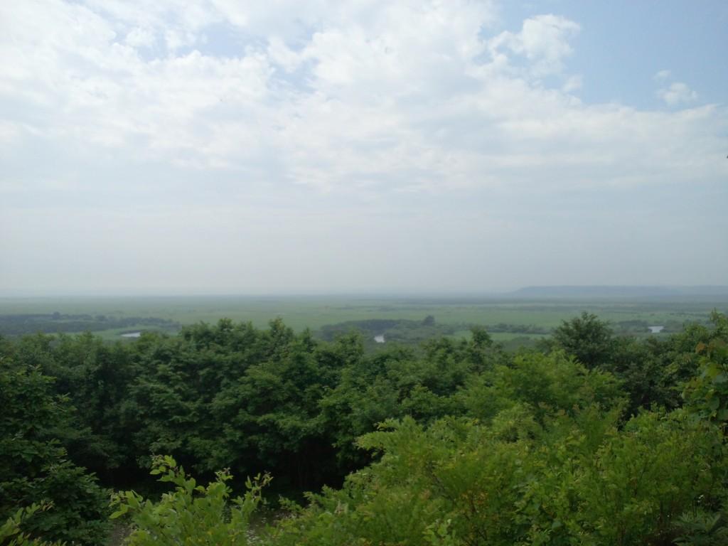 釧路湿原。地平線が見えるぐらい広い湿原です
