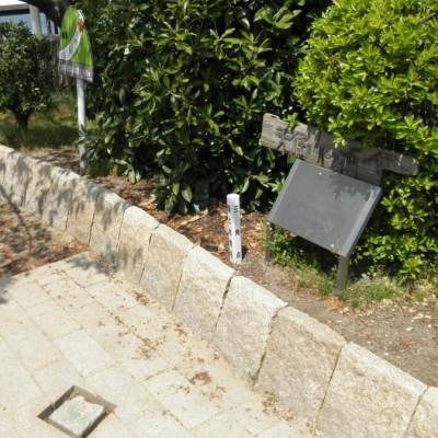 GoogleのTVCMでもお馴染みになった「日本一低い山」と書かれた看板と、床にある三角点。