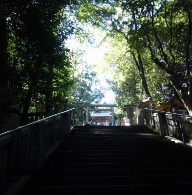 この階段を上ると、御本宮です。785段。