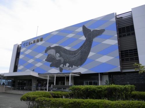 太地町立くじらの博物館。くじらにまつわるありとあらゆる物が展示されているだけでなく、イルカや他の魚についても取り上げられています。