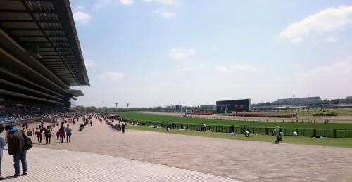 春の府中。府中本町駅からのゲートを抜けた直後の開放感と芝の緑が良いです。