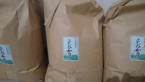 届いた米30kg。宅配は1箱で来ました。そのなかにお礼の紙と観光案内のパンフレットも同梱されていました。