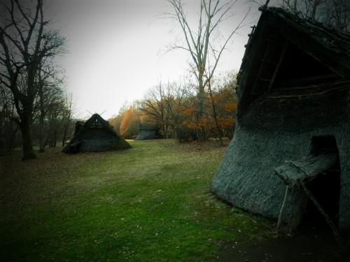 敷地の屋外には竪穴式住居を復元したものがありました。味を出すために無意味にピンホールカメラフィルタで撮影…。