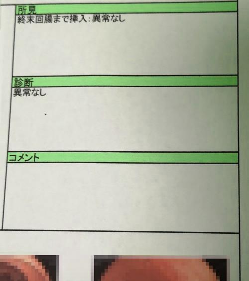 検査結果。「異常なし」でホッとしました。大腸の写真もありますがグロテスクなので省略…。